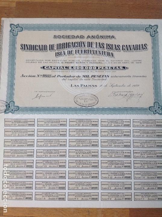 SINDICATO DE IRRIGACIÓN DE LAS ISLAS CANARIAS - ISLA DE FUERTEVENTURA (LAS PALMAS, 1928) (Coleccionismo - Acciones Españolas)
