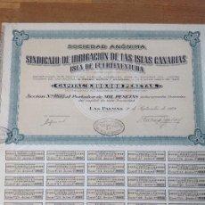 Coleccionismo Acciones Españolas: SINDICATO DE IRRIGACIÓN DE LAS ISLAS CANARIAS - ISLA DE FUERTEVENTURA (LAS PALMAS, 1928). Lote 139408102