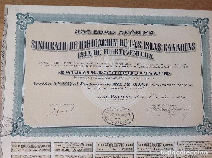 Coleccionismo Acciones Españolas: SINDICATO DE IRRIGACIÓN DE LAS ISLAS CANARIAS - ISLA DE FUERTEVENTURA (LAS PALMAS, 1928) - Foto 2 - 139408102