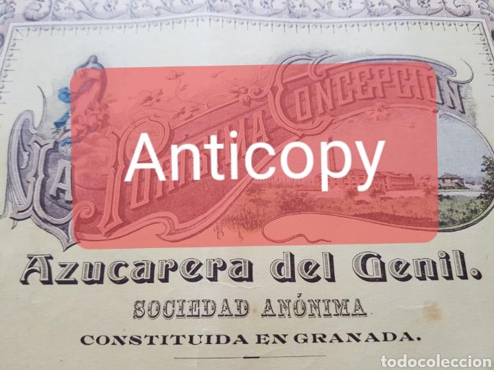 Coleccionismo Acciones Españolas: ACCION AZUCARERA PURISIMA CONCEPCION O DEL GENIL. 1904. SANTA FE. GRANADA. UNICA - Foto 2 - 143983904