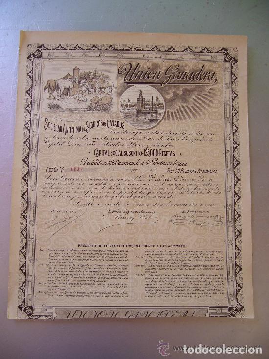 TORRE DEL ORO 1915 SEVILLA UNIÓN GANADERA SOCIEDAD ANÓNIMA SEGUROS GANADOS ACCIÓN 50 PESETAS SEVILLA (Coleccionismo - Acciones Españolas)