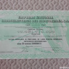 Coleccionismo Acciones Españolas: ACCIONE EMPRESA NACIONAL RIBAGORZANA, S.A 1976. Lote 193629855