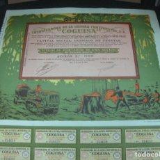 Coleccionismo Acciones Españolas: ACCION COLONIZADORA DE LA GUINEA CONTINENTAL. COGUISA. BATA 1 DE JULIO DE 1955. CON CUPONES.. Lote 194123323