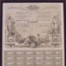 Coleccionismo Acciones Españolas: COMPAÑÍA GENERAL DE TABACOS DE FILIPINAS. BARCELONA. 1882. CÉDULA DE FUNDADOR. ENMARCADA. 44X36 CM.. Lote 228091690