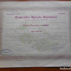 Colecionismo Ações Espanholas: (RESERVADA MANUEL) ACCION.COOPERATIVA AGRICOLA ALGODONERA.N.SEÑORA REYES.100 PESETAS.SEVILLA 1963-64. Lote 288485438