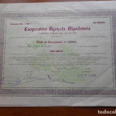 Colecionismo Ações Espanholas: (RESERVADA MANUEL) ACCION.COOPERATIVA AGRICOLA ALGODONERA.N.SEÑORA REYES.100 PESETAS.SEVILLA 1965-66. Lote 288485683