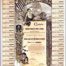 Coleccionismo Acciones Extranjeras: CEDULA FUNDADOR1901.- COMPAÑIA DE MINAS Y SONDEOS, S.A.. Lote 30192696