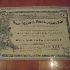 Coleccionismo Acciones Extranjeras: SOCIÉTÉ FONCIÈRE DU DOMAINE DE CHEIKH FADL (EGIPTO). Lote 47359609