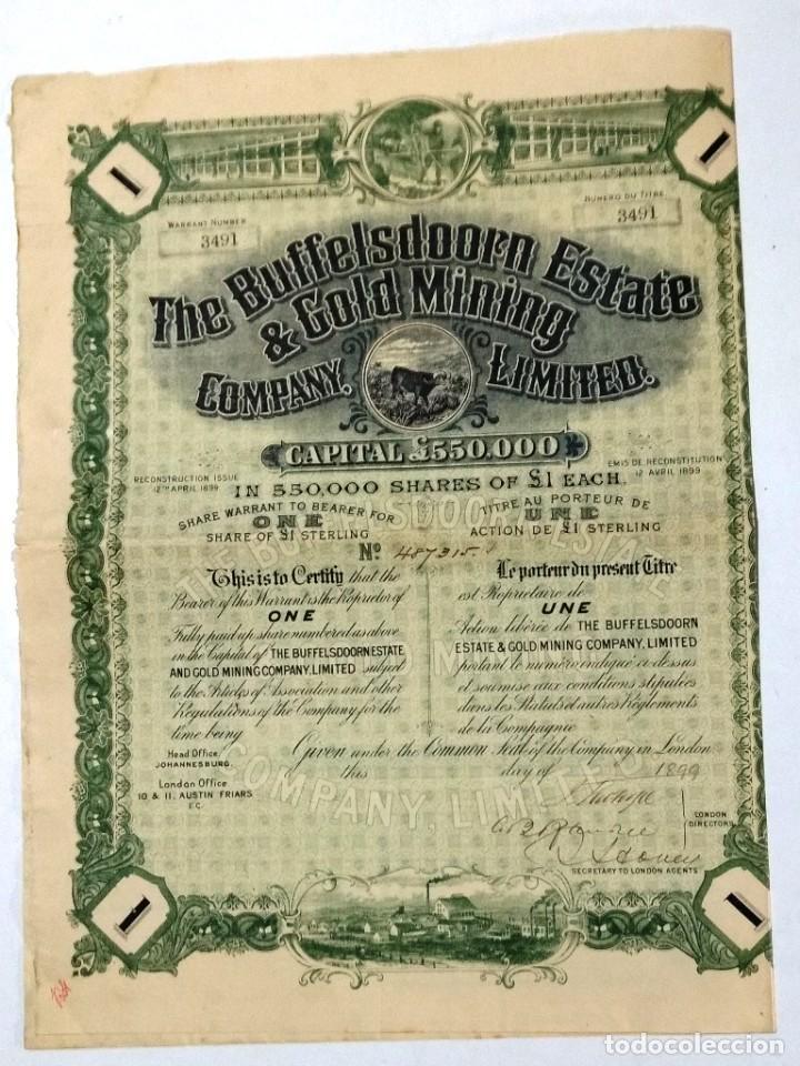 THE BUFFELSDOORN ESTATE & GOLD MINING (SUDÁFRICA REINO UNIDO) (Coleccionismo - Acciones Internacionales)