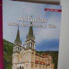 Arte: ASTURIAS , ARTE , NATURALEZA Y VIDA , -LUIS DIEZ TEJON EDICIONES LANCIA 2008. Lote 121536527