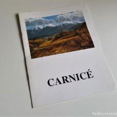 Arte: CARNICE PROGRAMA DE EXPOSICION GALERIAS AUGUSTA 1995 - 27.5 X 20.5.CM. Lote 165894846