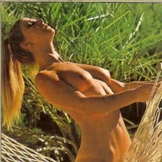 Calendarios: CALENDARIO DE SERIE - 1980 - B-2 - PHOTOGRAPHIC ART Nº 25 - DLB 39.163 - RTE. VILLA DEL NARCEA. Lote 186291196