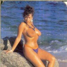 Calendarios: CALENDARIO DE SERIE - 1992 - GRAY. Lote 254829625