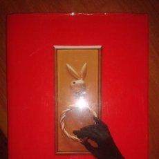 Libros: PLAYBOY PRIVAT - GRETCHEN EDGREN. Lote 31580797
