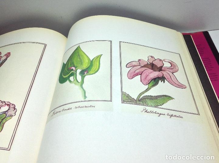 Libros: EROTOSCOPE - THE ART OF TOMI UNGERER - 2001 TASCHEN GMBH - Foto 11 - 141686458