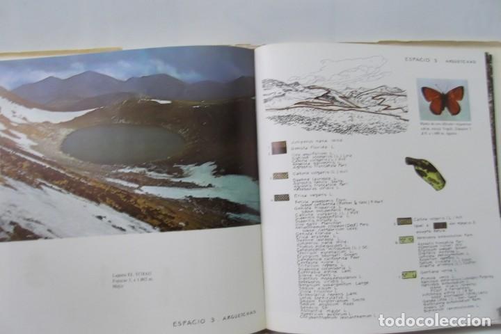 Libros: # EL CAMINO REAL DEL PUERTO LA MESA - VIA ROMANA #COLEGIO DE ARQUITECTOS DE LEON Y ASTURIAS# FIRMADO - Foto 50 - 181113742
