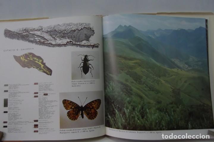 Libros: # EL CAMINO REAL DEL PUERTO LA MESA - VIA ROMANA #COLEGIO DE ARQUITECTOS DE LEON Y ASTURIAS# FIRMADO - Foto 51 - 181113742