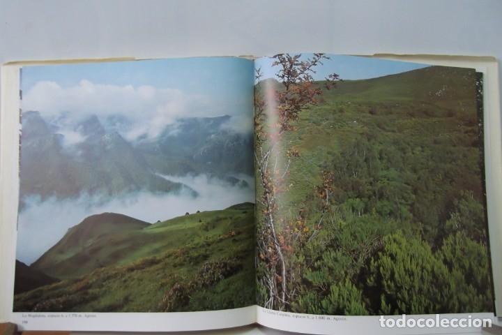 Libros: # EL CAMINO REAL DEL PUERTO LA MESA - VIA ROMANA #COLEGIO DE ARQUITECTOS DE LEON Y ASTURIAS# FIRMADO - Foto 52 - 181113742