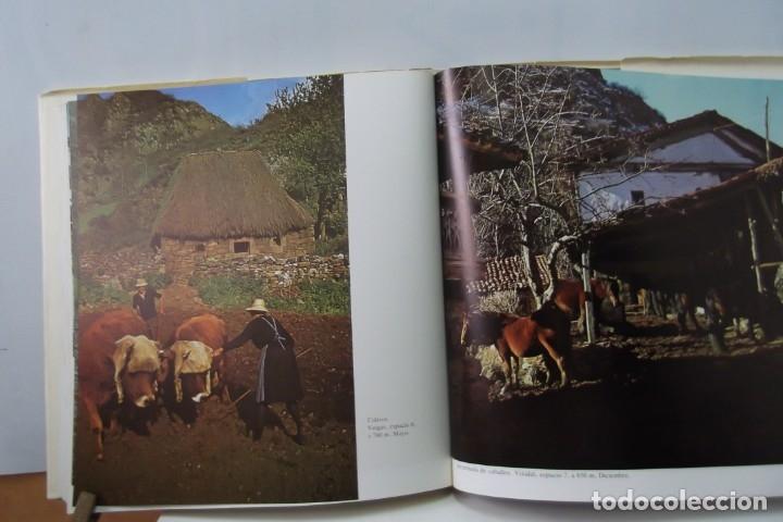 Libros: # EL CAMINO REAL DEL PUERTO LA MESA - VIA ROMANA #COLEGIO DE ARQUITECTOS DE LEON Y ASTURIAS# FIRMADO - Foto 53 - 181113742
