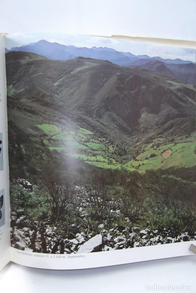 Libros: # EL CAMINO REAL DEL PUERTO LA MESA - VIA ROMANA #COLEGIO DE ARQUITECTOS DE LEON Y ASTURIAS# FIRMADO - Foto 54 - 181113742