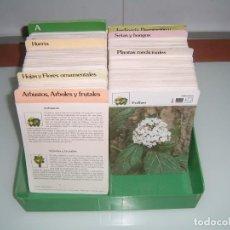 Otros: COLECCION DE ARBOLES PLANTAS FRUTALES SETAS ETC. Lote 132569174