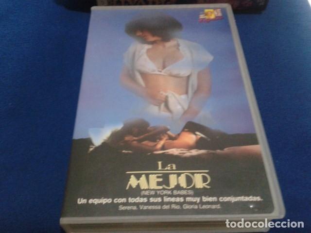 VHS EROTICO SATYRHORSE ( LA MEJOR - NEW YORK BABES ) SERENA, VANESA DEL RIO, GLORIA LEONARD (Coleccionismo para Adultos - Películas)