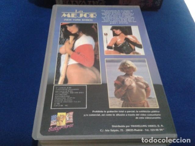 Peliculas: VHS EROTICO SATYRHORSE ( LA MEJOR - NEW YORK BABES ) SERENA, VANESA DEL RIO, GLORIA LEONARD - Foto 3 - 172269022