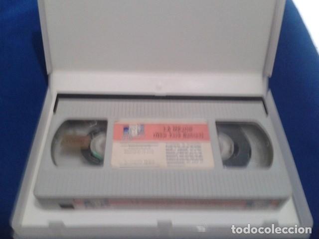 Peliculas: VHS EROTICO SATYRHORSE ( LA MEJOR - NEW YORK BABES ) SERENA, VANESA DEL RIO, GLORIA LEONARD - Foto 4 - 172269022