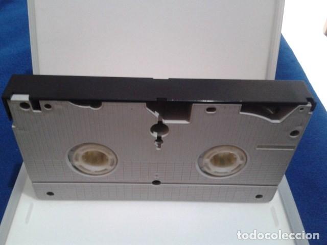 Peliculas: VHS EROTICO SATYRHORSE ( LA MEJOR - NEW YORK BABES ) SERENA, VANESA DEL RIO, GLORIA LEONARD - Foto 6 - 172269022