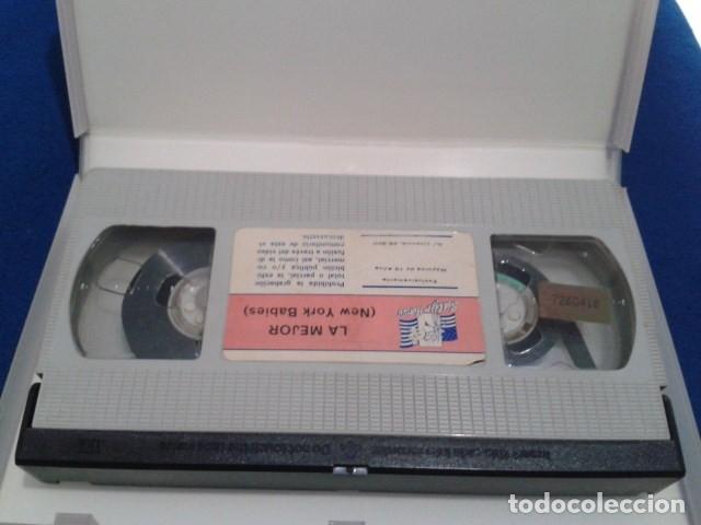 Peliculas: VHS EROTICO SATYRHORSE ( LA MEJOR - NEW YORK BABES ) SERENA, VANESA DEL RIO, GLORIA LEONARD - Foto 9 - 172269022