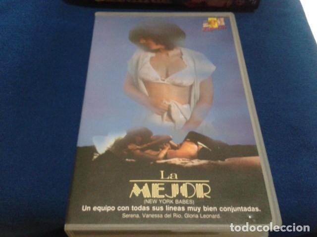 Peliculas: VHS EROTICO SATYRHORSE ( LA MEJOR - NEW YORK BABES ) SERENA, VANESA DEL RIO, GLORIA LEONARD - Foto 10 - 172269022