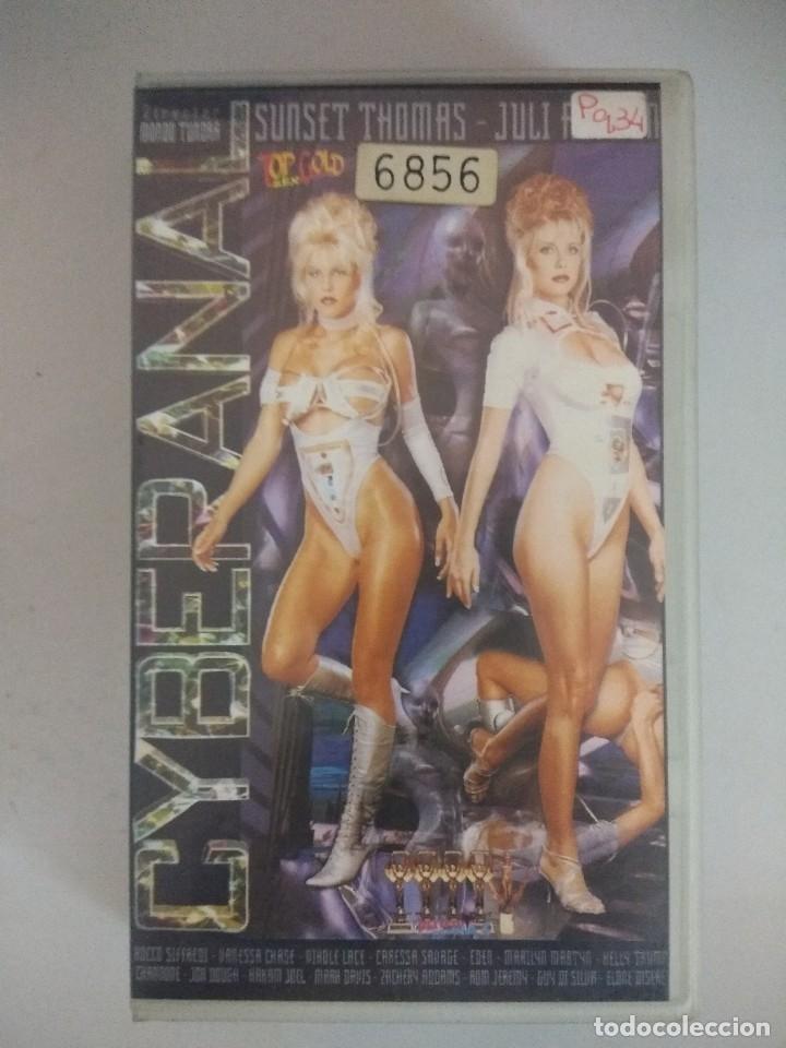 VHS EROTICO/CYBERANAL/KELLY TRUMP-ROCCO SIFFREDI. (Coleccionismo para Adultos - Películas)