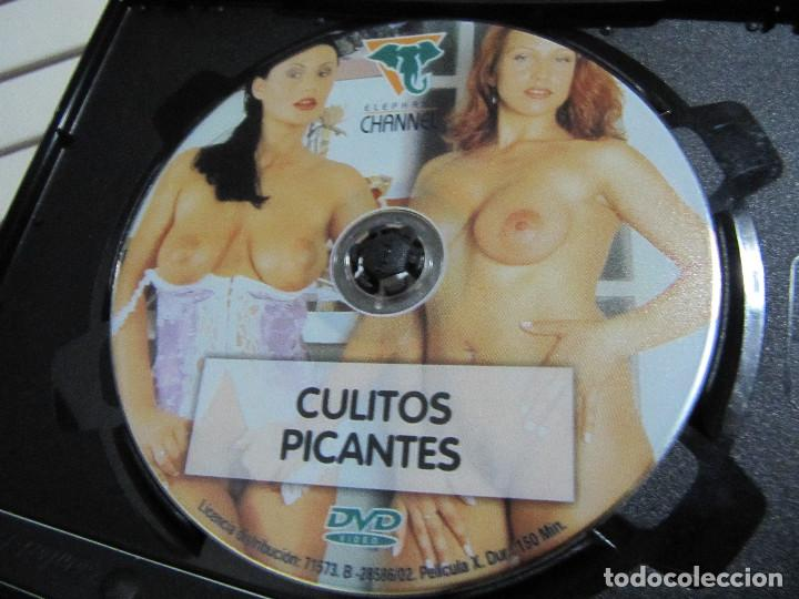 Peliculas: CULITOS PICANTES DVD 150 MINUTOS - Foto 6 - 190306588