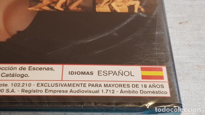 Peliculas: SUMISA Y SIN CONTROL / STORMY DANIELDS / DVD - PRECINTADO. - Foto 3 - 202423751