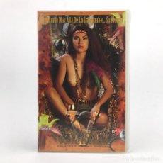 Peliculas: VALENTINA PRINCESS OF THE FOREST. MALINA FELECIA NICI STERLING SHAWN E. BROOKE LEE ONYX PAPILLON VHS. Lote 220628093