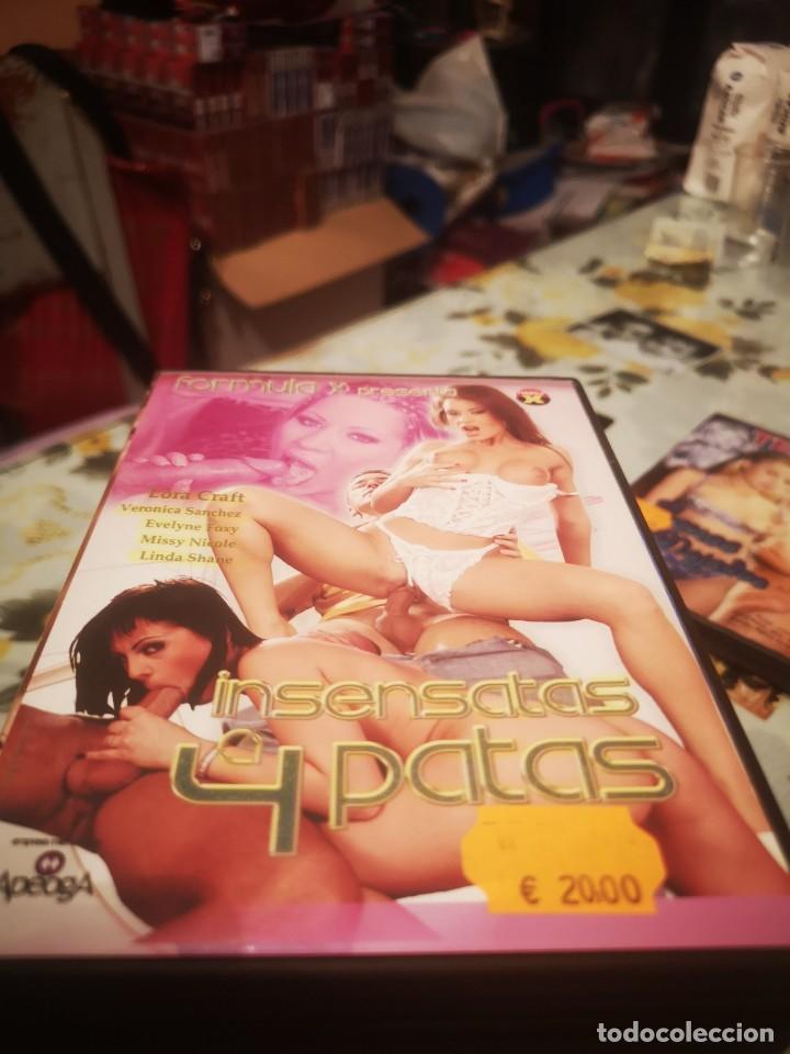 PELÍCULA DVD ADULTO (Coleccionismo para Adultos - Películas)