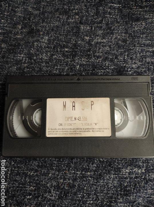 VHS WASP PELICULA X TAYLOR WANE - EROTISMO VINTAGE AÑOS 80 (Coleccionismo para Adultos - Películas)