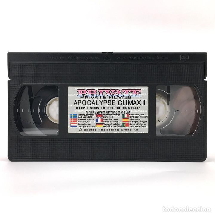 APOCALYPSE CLIMAX 2. TAMMI ANN ANITA BLOND NICOLETTE FAULUDI MELISSA HILL BARBARA MOLATH PRIVATE VHS (Coleccionismo para Adultos - Películas)