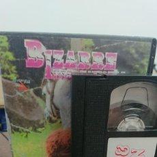 Peliculas: HORSE & WOMEN - VHS - BIZARRE INTERNATIONAL. Lote 270585998