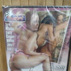 Peliculas: CURSOS DE PINTURA PARA PONERLA DURA - DVD -PRECINTADO-. Lote 289899348