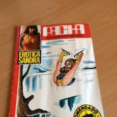Revistas: REVISTA PACHA Nº 1 1977. Lote 122352391