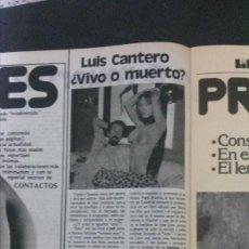 Revistas: SUSANA ESTRADA. RECORTE REVISTA. Lote 147303302