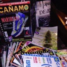 Revistas: REVISTA CAÑAMO. Lote 228532395