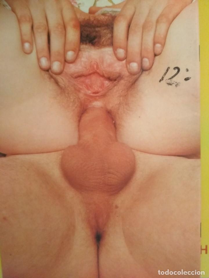 Revistas: Anal fucking lovers nr 12 - Foto 2 - 278292648