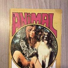Revistas: ANIMAL CLIMAX N.1 (1970S MAGAZINE) ANIMAL BIZARRE LESBIAN OUTDOOR ...(SEE PHOTOS). Lote 295820073