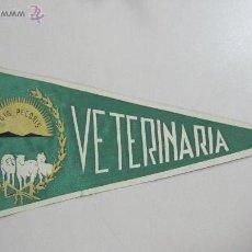 Banderines de colección: BANDERIN. VETERINARIA. 33 CM. SEDA. Lote 53332221