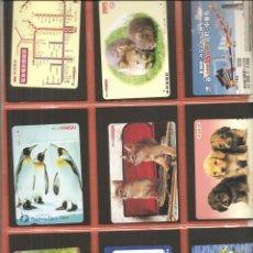Coleccionismo Billetes de transporte: LOTE 18 TARJETAS-BILLETES TRANSPORTE, JAPÓN, METRO-AUTOBÚS-FERROCARRIL. Lote 245550145