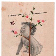 Coleccionismo de carteles: LAMINA PUBLICITARIA FARMACIA. MEDICINA AÑOS 50. CONTIENE FOTOGRAFIA DEL REVERSO . Lote 13624800