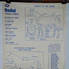Coleccionismo de carteles: CARTEL INGLÉS DE RADIOL. AÑOS 70. Lote 27083813