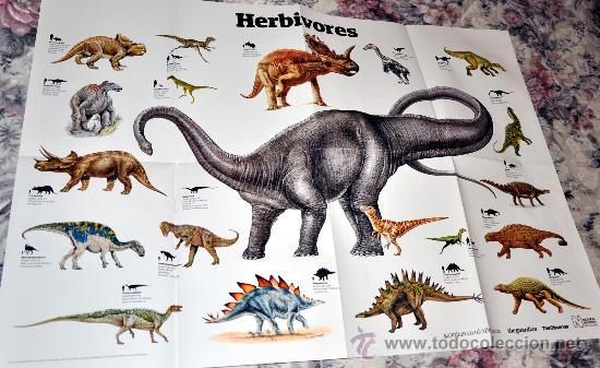 Poster De Dinosaurios Herbivoros 59 X 83 Cm Sold Through Direct Sale 30395137 La dieta verde de estos animales se puede asemejar a la de animales actuales. poster de dinosaurios herbivoros 59 x
